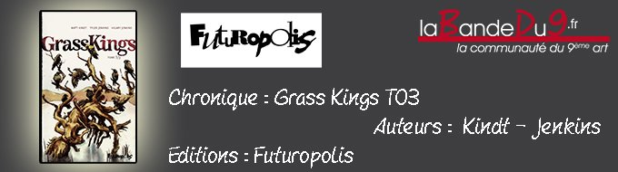 Bandeau de l'article GRASSKINGS T03